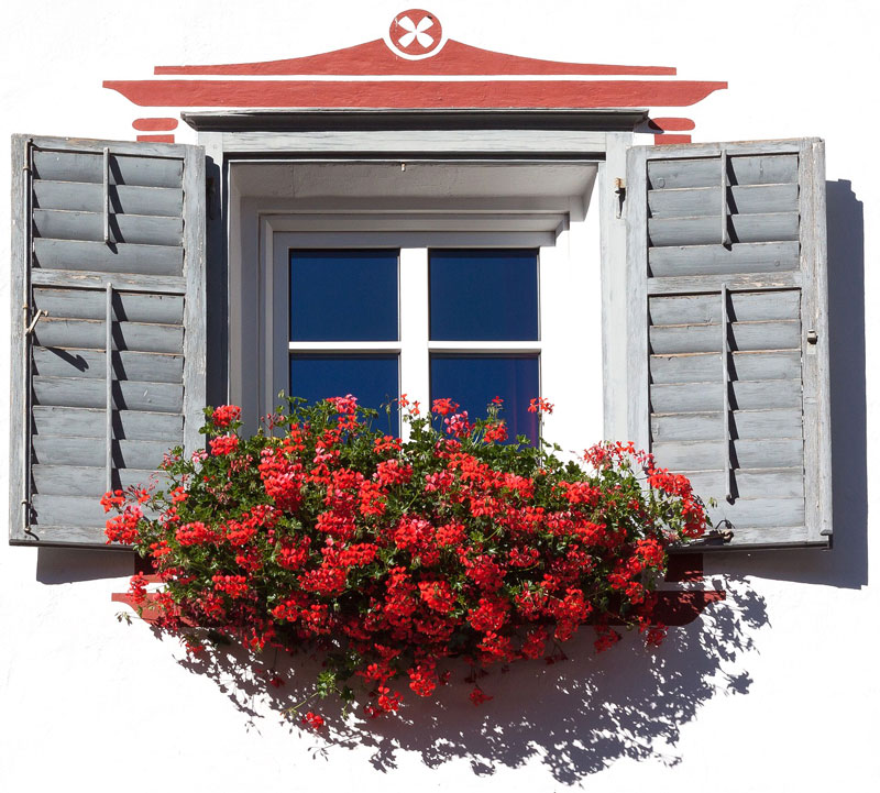 Home Staging, ventana con flores rojas